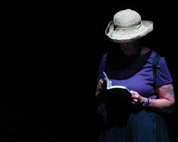 Leer a ANNE HOLT